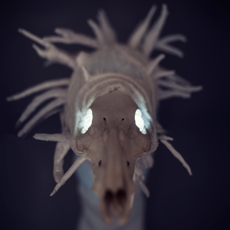 Hadí duch — svítící objekt Evy Spacelights Nečasové